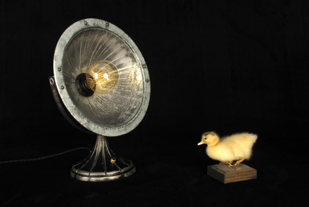 ANCIEN SPOT LAMPE CALOR METAL ESPRIT INDUSTRIEL LOFT LUMINAIRE VINTAGE OLD SCHOOL BAZAAR 6