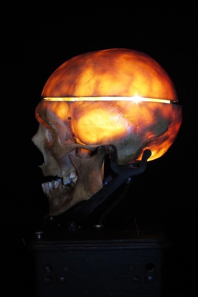 LAMPE TRACTORCREATION LUMINAIRE CRANE HUMAIN HUMAN BONES DECORATION LUMINAIRE CABINET CURIOSITES ANTIQUITES DECALESS OLD SCHOOL BAZAAR 10