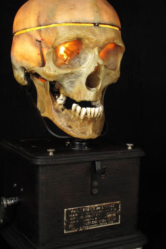 LAMPE TRACTORCREATION LUMINAIRE CRANE HUMAIN HUMAN BONES DECORATION LUMINAIRE CABINET CURIOSITES ANTIQUITES DECALESS OLD SCHOOL BAZAAR 2