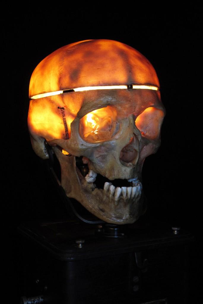 LAMPE TRACTORCREATION LUMINAIRE CRANE HUMAIN HUMAN BONES DECORATION LUMINAIRE CABINET CURIOSITES ANTIQUITES DECALESS OLD SCHOOL BAZAAR 6
