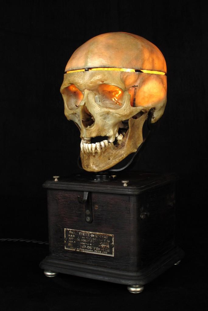 LAMPE TRACTORCREATION LUMINAIRE CRANE HUMAIN HUMAN BONES DECORATION LUMINAIRE CABINET CURIOSITES ANTIQUITES DECALESS OLD SCHOOL BAZAAR 7