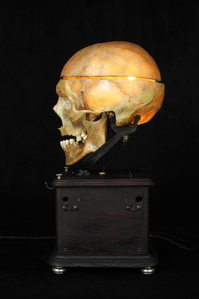 LAMPE TRACTORCREATION LUMINAIRE CRANE HUMAIN HUMAN BONES DECORATION LUMINAIRE CABINET CURIOSITES ANTIQUITES DECALESS OLD SCHOOL BAZAAR 8